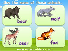Wild Animals PowerPoint lessons, ESL PPT on animal names, lion, bear, fox, deer, wolf etc