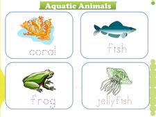 Aquatic Animals vocabulary