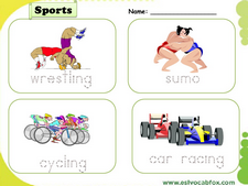 Sports vocabulary
