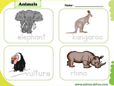 Wild Animals vocabulary