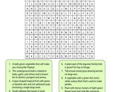 vegetables-word-search-2