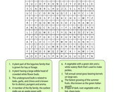vegetables-word-search-4