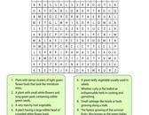 vegetables-word-search-5