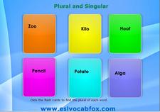 Plural Singular 1