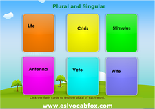 Plural Singular 2