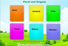 Plural Singular 4