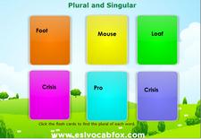 Plural Singular 5