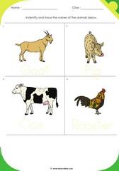 Farm Animals 2