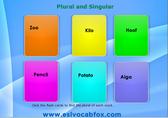 plural-singular-1