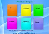 plural-singular-3
